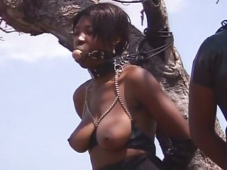Black And Ebony Amateur Brunettes video: Black Amateur Bitches Sprayed with Cum and Tied Up to a Tree