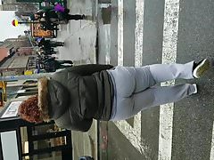 GREY SWEATS LATINA BIG BOOTY