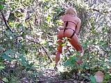 Dans les bois 6