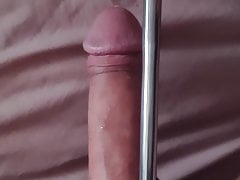 Unlocked from chastity for sounding 10mm rod