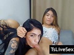 Horny Live Trans Sex 14
