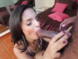 Small gorgeous shemale takes big black cock