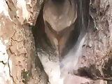 one tree hill sex nude scenes