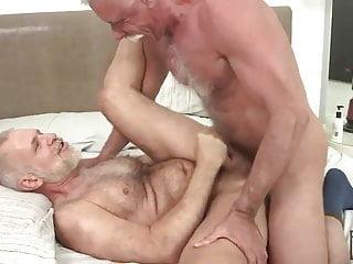 سکس گی 2 maduros canosos velludos muscle  masturbation  hd videos handjob  daddy  blowjob  bear  bareback  anal