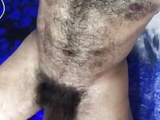 hairy and big