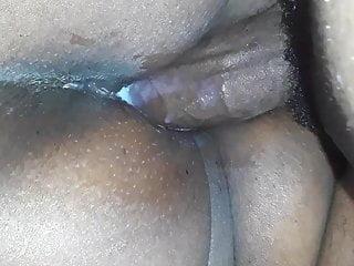 ass N175...